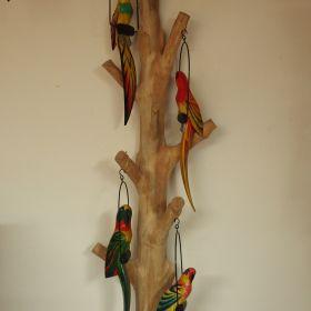 papegaai-hout-stok-kleur